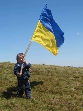 Звернення до Зеленського з приводу заяви Богдана про референдум про домовленості з Росією